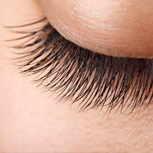 Home \/ Services \/ Lashes + Eyecare \/ Mink Eyelash Extension Refill